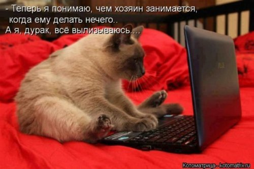 1379665184_joy-9.jpg