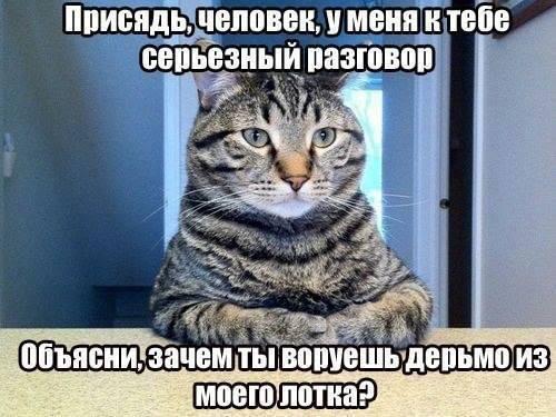 1380748_633590116693997_353901421_n.jpg