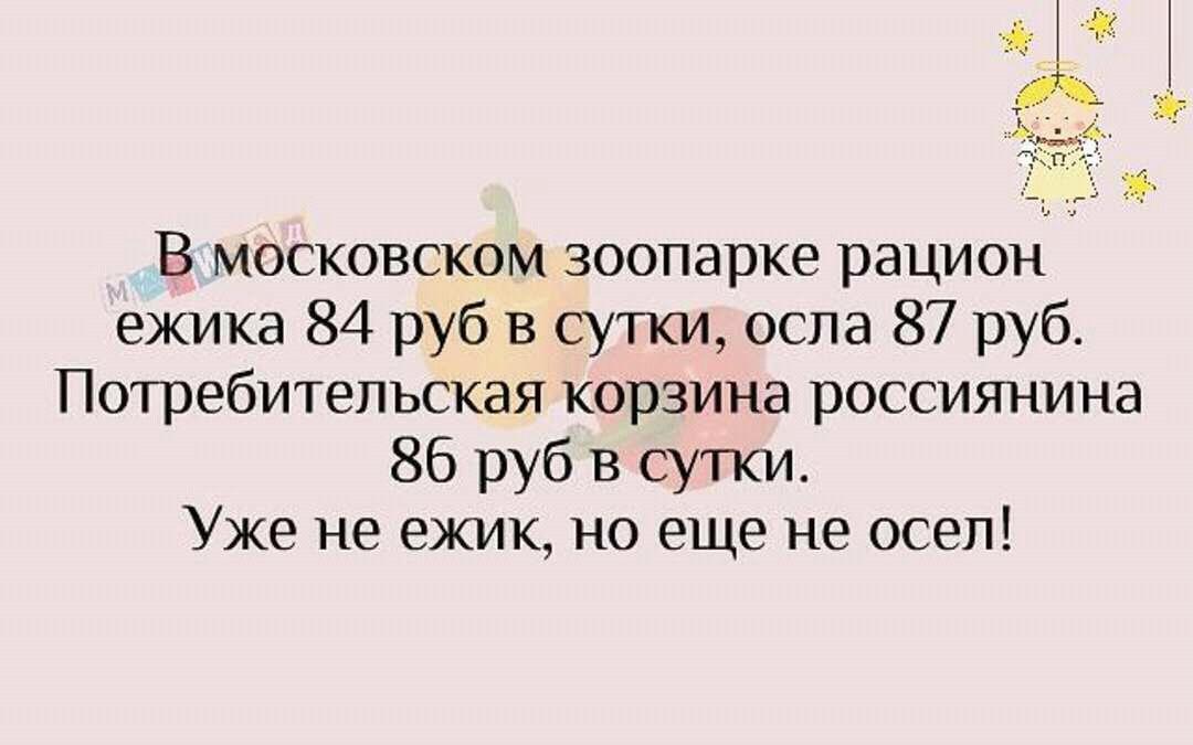 FB_IMG_14560312125628830.jpg