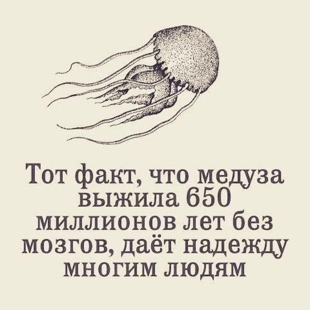 Ht_807UKpIc.jpg