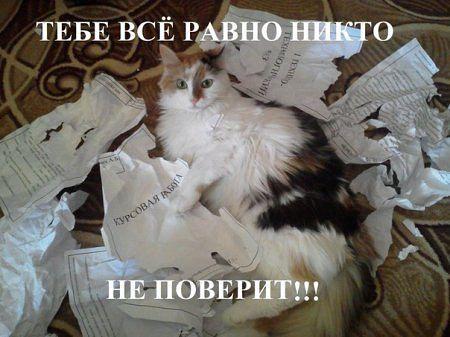 )))).jpg