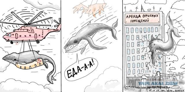 Полет кита.jpg