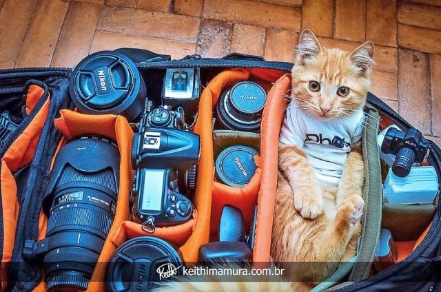 полный набор фотографа.jpg
